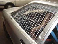 stockcar-auto_43